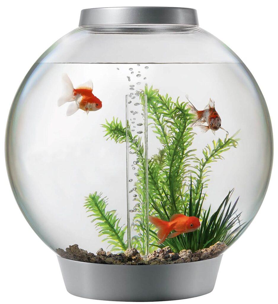 Анализ воды из аквариума